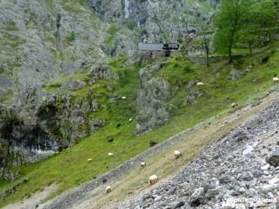 Ruta Cares-Picos de Europa; cascada somosierra chorro navafria el parrizal de beceite parque natural